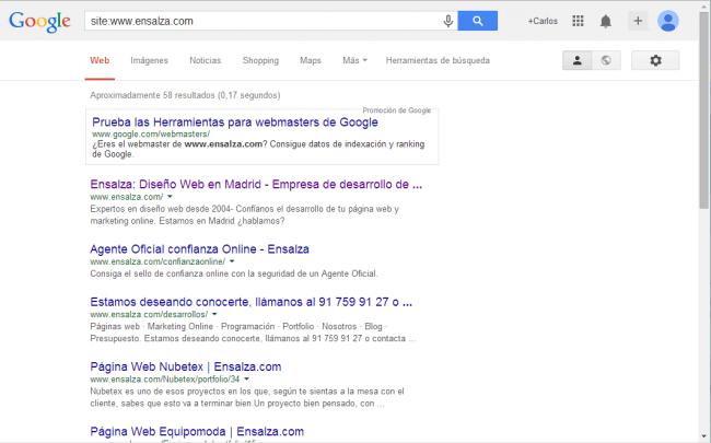 ejemplo de búsqueda de páginas indexadas en el sitio