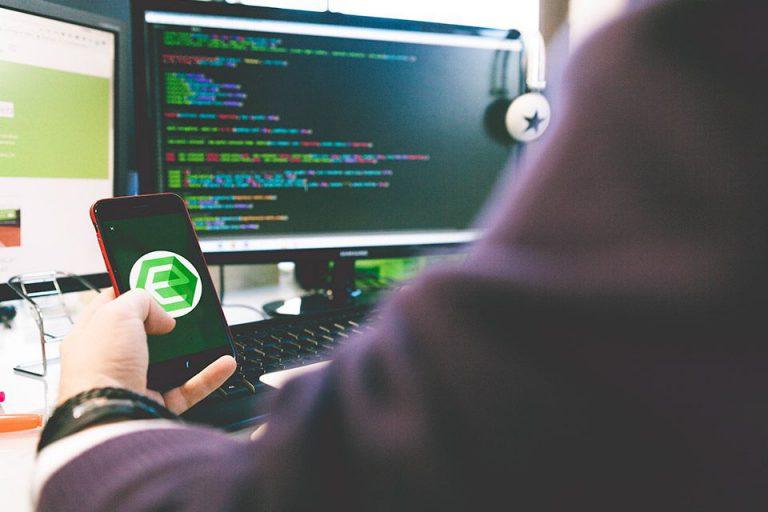desarrollador web y logo de ensalza