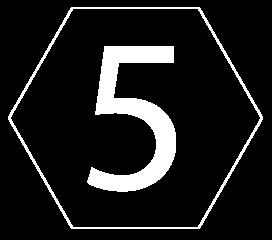 diseño 5 blanco